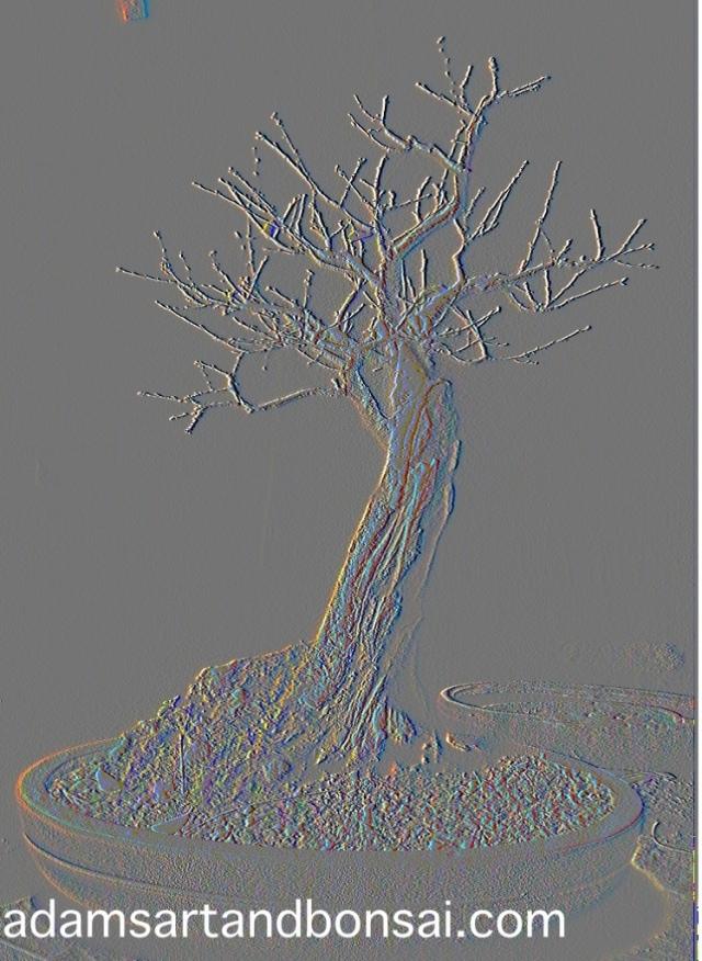 20120908-103433.jpg