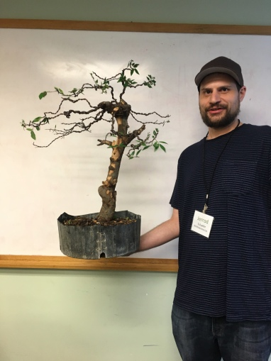 Bonsai On The Road Some Travel Pics From My June 2018 Mid America Tour Adam S Art And Bonsai Blog